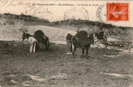 17 ILE D'OLERON / La Récolte Du Varech / Ânes / Animée. - Ile D'Oléron