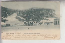 BRASILIEN - PORTO ALEGRE, Rast Auf Der Reise Nach Cidreira, 1908 - Porto Alegre