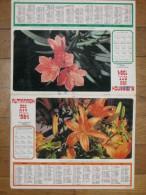 Almanach Des PTT  (Fleurs) - Tamaño Grande : 1981-90