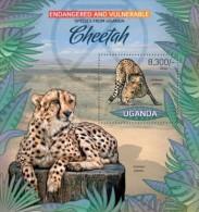 Uganda. 2012 Leopard. (402b) - Big Cats (cats Of Prey)