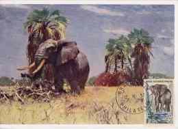 CM AEF - Eléphant - Brazzaville - 1957 - Autres