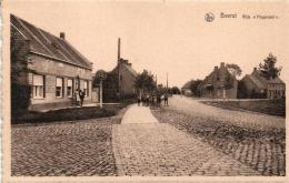 """BELGIQUE - FLANDRE OCCIDENTALE - DIXMUDE - BEERST - Wijk """"Hogeraad"""". - Diksmuide"""