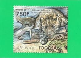 REP. TOGOLAISE ,,, LE  LEOPARD  DE  BERBERIE  ,,, **  750 F. **  POSTE 2011 ,,, TBE - Togo (1960-...)