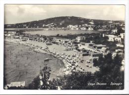 231/600 - CAPO MISENO SPIAGGIA . Viaggiata Nel 1961 - Napoli