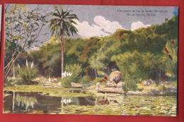 BBRA-07  Litho  Jardin Botanique , Rio De Janeiro  Non Circulé. ATAR. - Rio De Janeiro