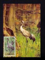 "LIETUVA 1991 Vilnius Maximum Cards Postcards "" Grus Grus Gervè "" Kranich Oiseaux Birds Animals Faune Animaux Mc155 - Birds"
