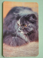 Cat / Kat / Chat 1993 ( Russia Sovjet Unie / 92-5689 ) ( Format 9 X 6 Cm - Zie Foto´s Voor Détails ! - Petit Format : 1991-00