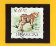MOZAMBIQUE ,,, ACINONYX  JUBATUS ,,,,**  20 . 00  MT  ** ,,, POSTE  2010 ,, TBE - Mozambique