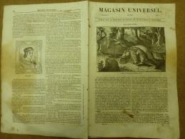 Janvier 1834  MAGASIN UNIVERSEL: Les Alligators; Zitza Près De PALERME; Diane De Goujon; Le Flammant - Kranten