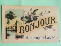 Un Bonjour Du Camp Du Larzac - Non Classés