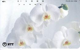 GIAPPONE JAPAN NIPPON NTT PHONECARD SCHEDA TELEFONICA - Fleurs