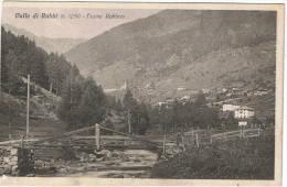 VALLE  DI  RABBI:  FIUME  RABBIES  -  CORTA  A  SX.  -  FP - Trento