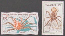 TRANSKEI 1987 TAAF Spider Ragno Animal Fauna Mnh ** - Ragni