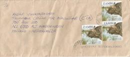 Zambia 2007 Lumumba Buffalo Cover - Zambia (1965-...)
