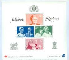 NEDERLAND SPECIAAL BLOK * JULIANA REGINA * NOMINAAL GEKOST FL 15,00 * JULIANA + BERNHARD * RED CROSS * RODE KRUIS (6111) - Periode 1949-1980 (Juliana)