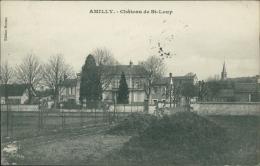 45 AMILLY / Château De Saint Loup / - Amilly