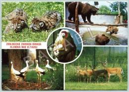 Hluboká Nad Vltavou (Tchéquie) - Zoologická Zahrada Ohrada - Autres