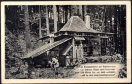 GERMANY Ca 1935 - Hänsel Und Gretel Im Märchengrund POSTAL CARD