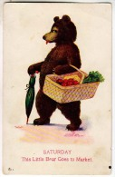 Saturday Bear, Basket Of Food, By Wall - Bears