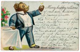 Bear, Many Happy Returns - Bears