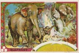 PACY SUR EURE CHROMOS ELEPHANT LE ROYAL CHOCOLAT ETS R TURLOT TBE - Chromos