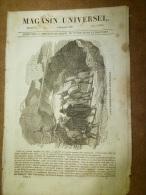 5 Déc. 1833 MAGASIN UNIVERSEL : Lamas Des Cordillières;THEBES; King-Kong En CHINE ;POTOSI;Espèces Animales éteintes - Kranten
