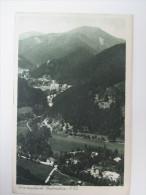 AK 1921 Sommerfrische Gutenstein N.-Oe Echt Gelaufen! Verlag: P.Ledermann, Wien - Gutenstein