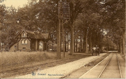 BOUWEL (Grobbendonk) - Zicht op het Boschwachtershuis - paard en kar - attelage - TOP