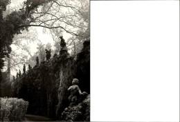 Photokunst Worms Kultur Im Rauhreif - Places