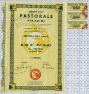 Cie Pastorale Africaine à Douala, Cameroun - Afrique