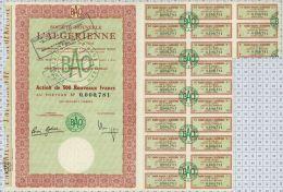 Sté Nouvelle L'Algerienne à Oran - Afrique