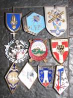Lot De Dix Insignes Toutes Armes - Armée De Terre