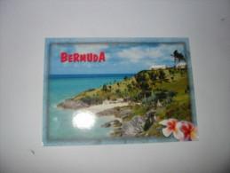 BERMUDABeach Of South Shore - Bermudes