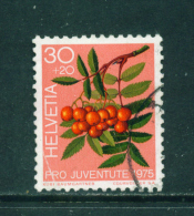SWITZERLAND - 1975  Pro Juventute  30+20c  Used As Scan - Pro Juventute