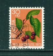 SWITZERLAND - 1973  Pro Juventute  30+10c  Used As Scan - Pro Juventute