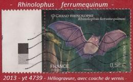 2013 -  Europe  -  France  -  Chauve-souris  -   0,58 €  Grand Rhinolophe -