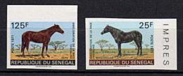 SENEGAL 1971 - Cheval - Serie NON Dentelee Neuve Sans Charniere (Yvert 349/50) - Senegal (1960-...)