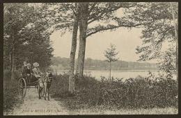 MEILLANT Rare L'Etang De La Grille Dans La Forêt (ND Phot.) Cher (18) - Meillant