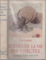 Nelson Fabre Scenes De La Vie Des Insectes - Animaux