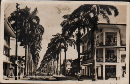 PARAMARIBO - ZWARTEHOVENBRUGSSTRAAT (Amérique, Surinam) - Carte Photo - Surinam