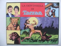 TARZAN John Celardo Daily Strips 7237 à 7296 - Livres, BD, Revues