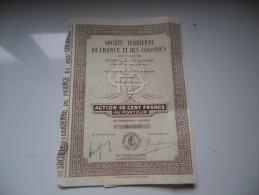 TERRIENNE DE FRANCE ET COLONIES (1929) NICE-ALPES MARITIMES - Actions & Titres
