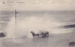 Oostende - Een Golfslag (paard) - Oostende