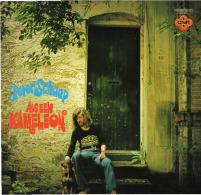 * LP *  PETER SCHAAP - ALS EEN KAMELEON - Vinyl Records