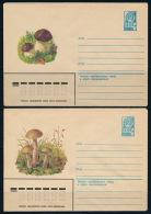 Russia USSR Russland Stationery Cover (2) Mushrooms 1979 Ganzsache Pilze °BL 0604 - Pilze