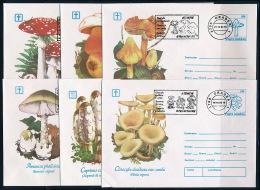 Romania Rumänien 1993 Stationery Cover & Special Machine Postmark (12) Mushrooms Ganzsache Pilze °BL 0662 - Pilze