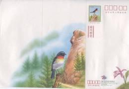 Taiwan 1999 Taiwan Pre-stamp Domestic Letter Sheet Bird Forest Rock Monkey Orchid Flower Postal Stationary - 1945-... République De Chine