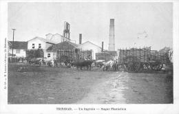 Trinidad : Sugar Plantation - Sucrerie - Trinidad