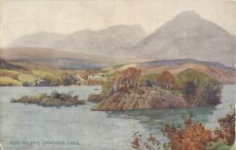 CUMBRIA - CONISTON LAKE - PEEL ISLAND - A & C Black ART CARD - Cumberland/ Westmorland