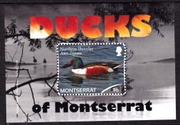 Montserrat Ducks Souvenir Sht Mint NH - Montserrat